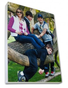 Mum, dad and two boys sitting on a tree on a photo canvas