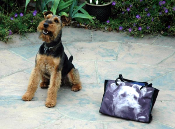 Dog standing next to a handbag with a photo of the same dog