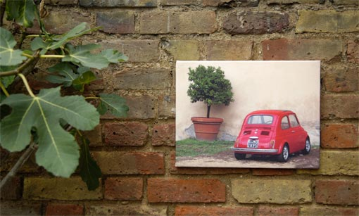 Car and plant on a canvas print hanging on a brick wall