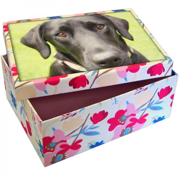 A black dog on the cover of a box and a flower pattern on the sides of the box