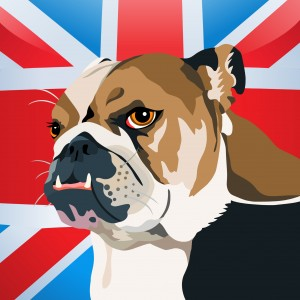 Union jack flag and english bulldog in cartoon style
