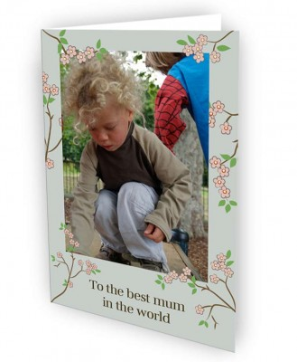 mothers day cards flowers. Mother#39;s Day Greeting Cards