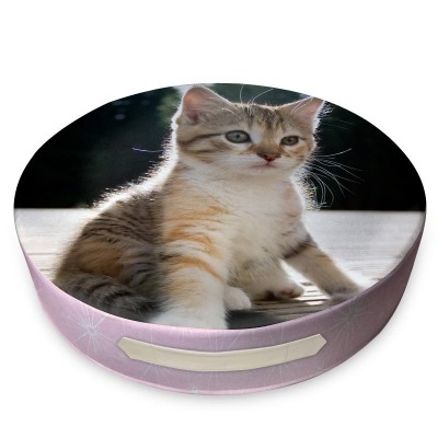 Pink round cushion with kitten on the cover and leather handle on the side