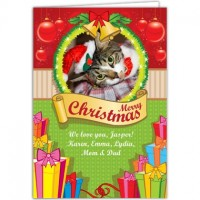 Cat on Christmas card