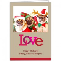 Three dogs on christmas card