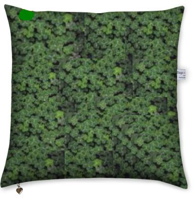 photo cushion with a design of clovers