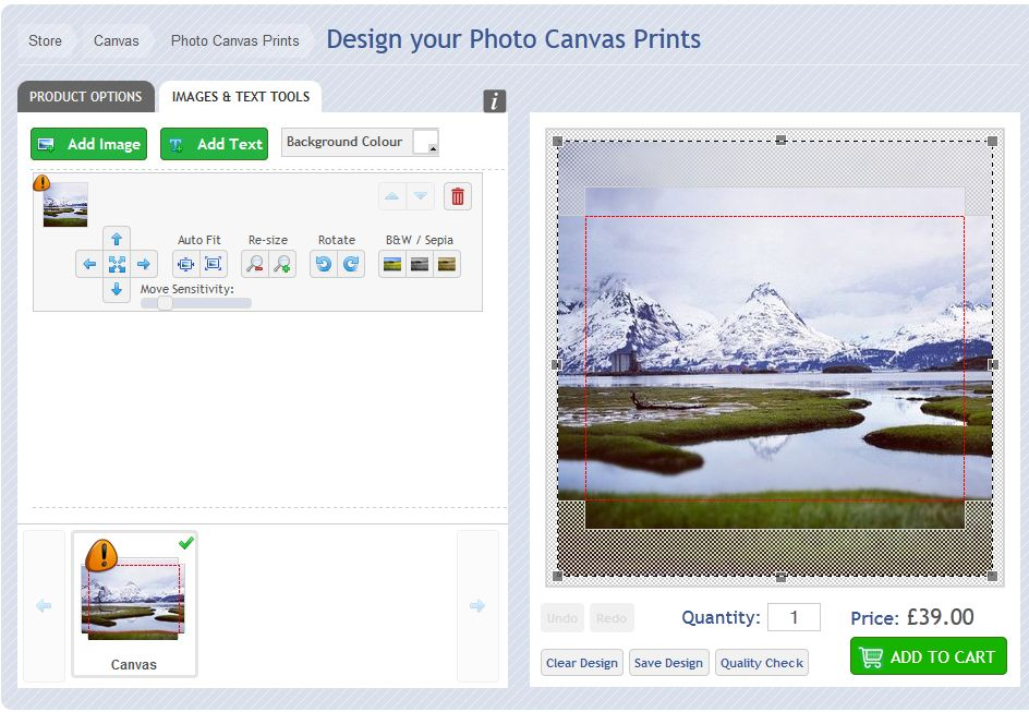Screenshot of photo canvas design tools