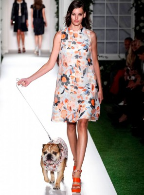 mulberry-catwalk-floral-print-model-dog