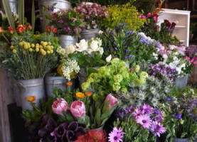 blooming-marvellous-competition-florist