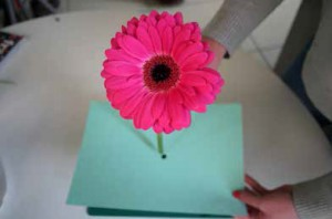 blooming-marvellous-competition-flower-on-paper