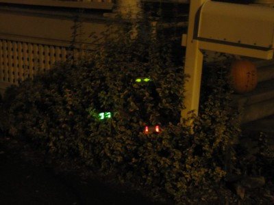 Halloween-Eyes-in-the-Bushes