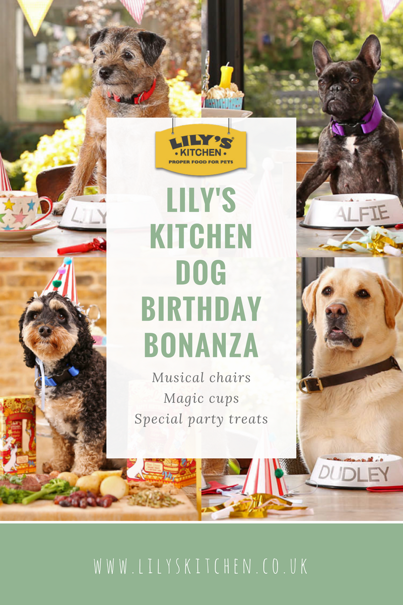 Lily's Kitchen dog birthday party