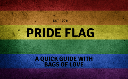 Pride flag 101