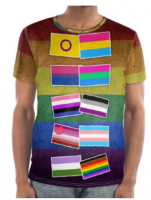 pride 2018 flag of flags tee