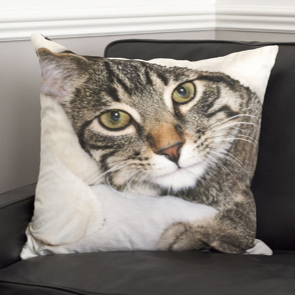 cushion with cat