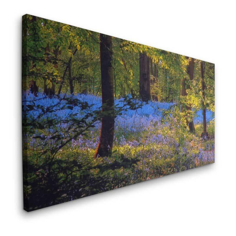 Personalised photo canvas prints with next day delivery for Buy canvas prints online