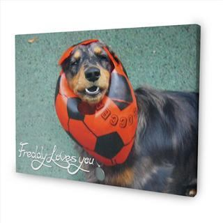 personalised message canvas dog pets