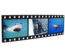 filmstrip photo montage